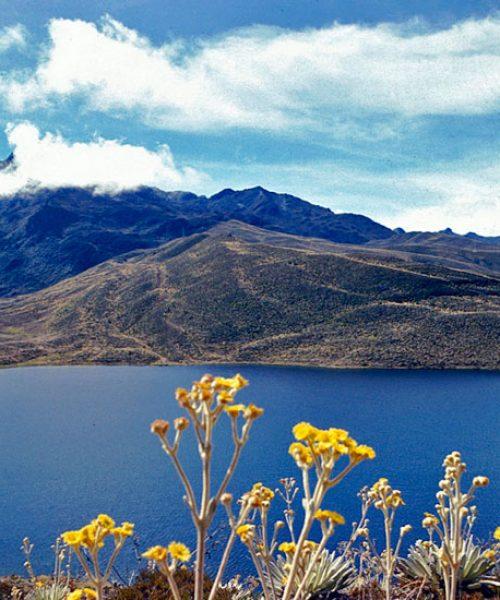 Laguna-de-mucubaji,-merida-venezuala-3